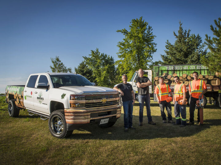How to Become a Tree Care Professional